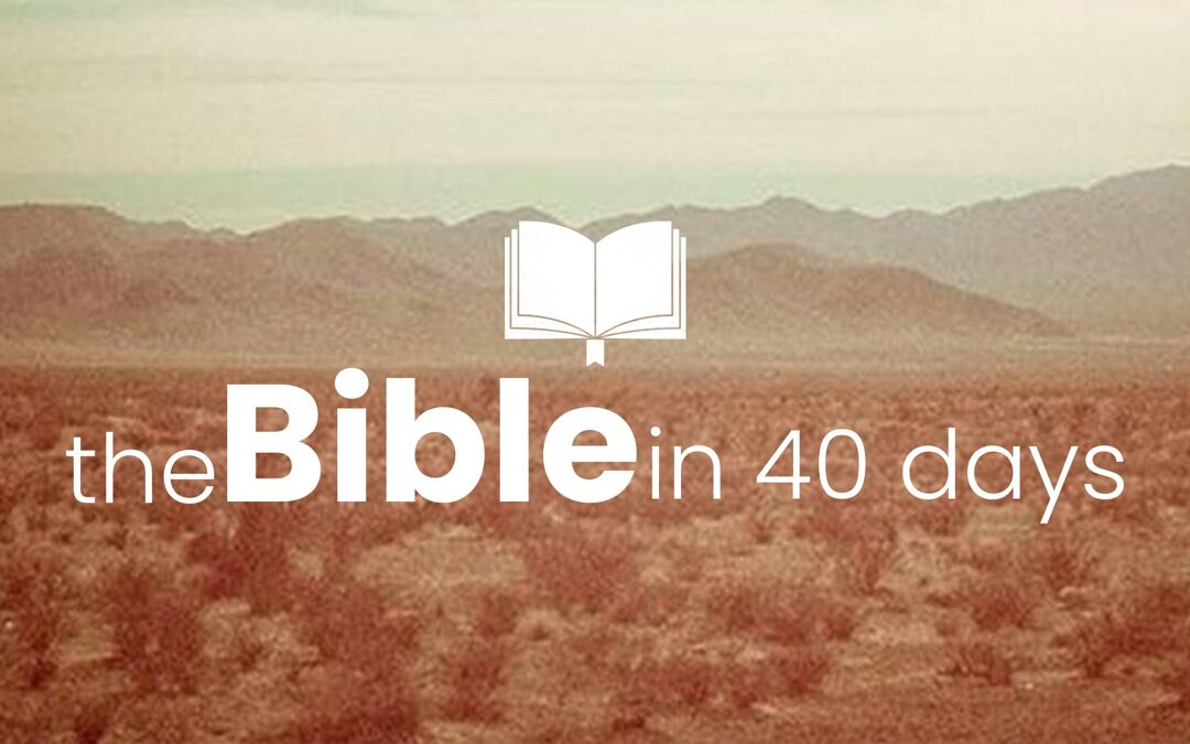 The Bible in 40 Days